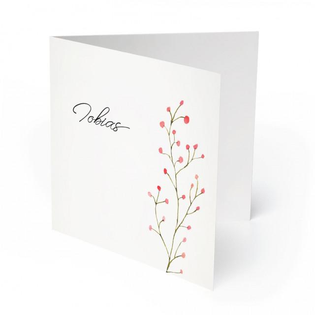 Geburtskarten - Beeren für Jungen